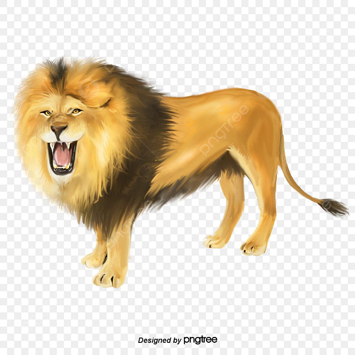 王元素 Rugido Do Leao Elementos Feroz Animal Arquivo Png E Psd