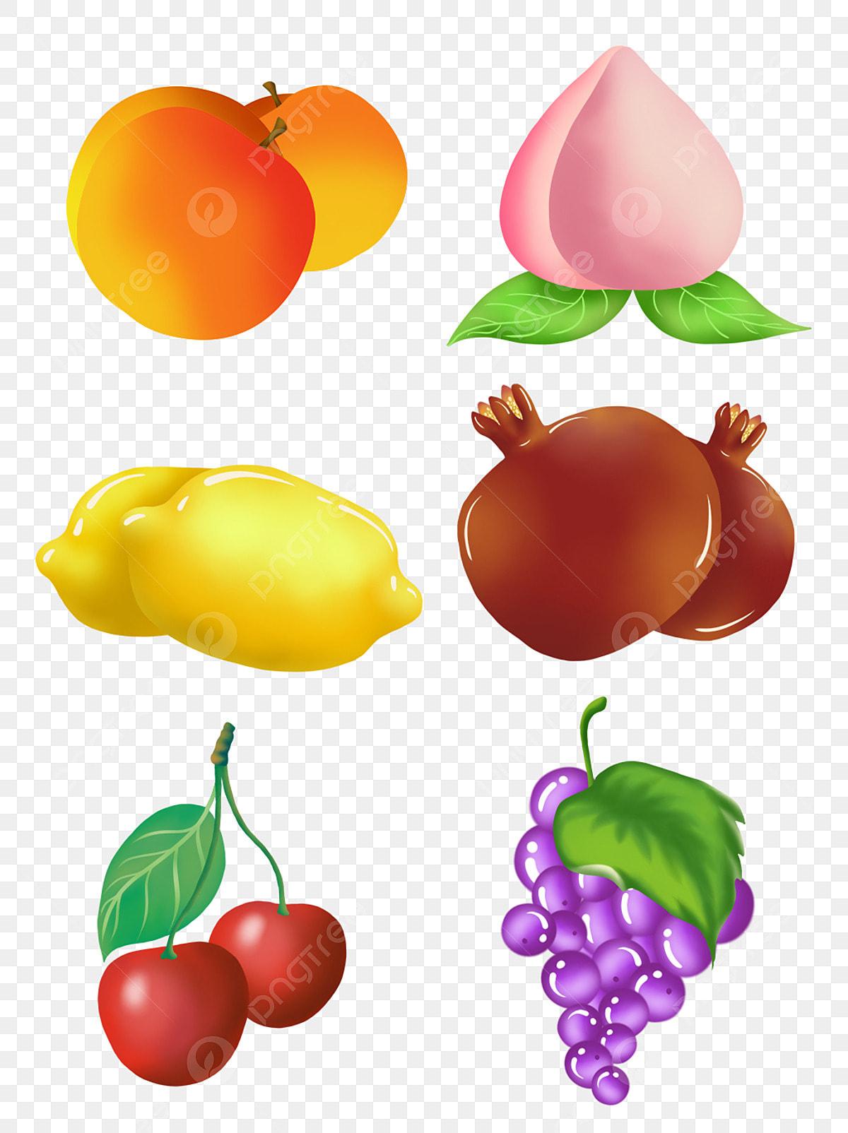 Gambar Buah Buahan Dan Sayur Sayuran Mudah Dilukis Tangan Unsur Unsur Ilustrasi Komersial Buah Dan Sayur Sayuran Yang Mudah Makanan Kartun Buah Kartun Png Dan Psd Untuk Muat Turun Percuma