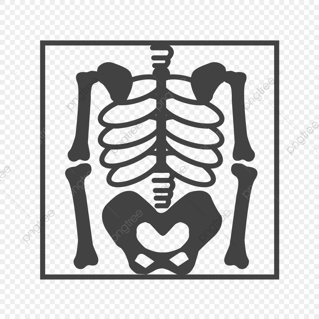 Skeleton Glyph Black Icon Black Icons Skeleton Bones Png And Vector With Transparent Background For Free Download