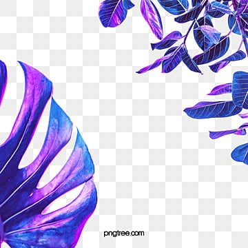 illusive blue purple neon tropical leaf border, Magic Color, Leaf, Tropic PNG and PSD