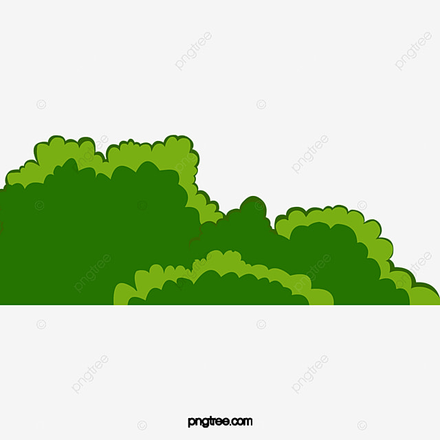 Green Plants Shrubs And Grasses, Summer, Plant, Bushes PNG