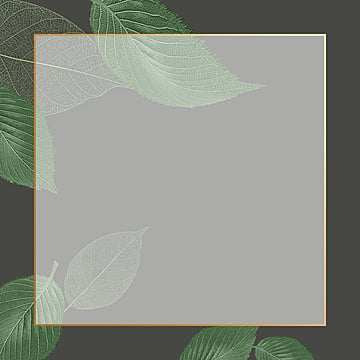 natural frame, Frame, Floral, Flowers PNG and PSD