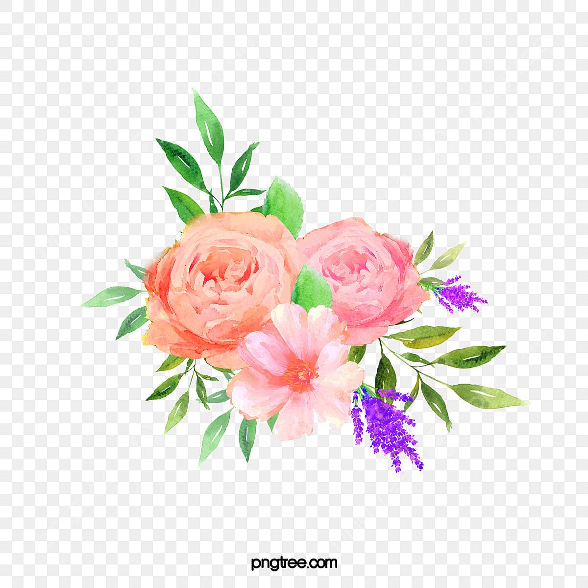 Belle Fleur Florale Pivoine Aquarelle Grappe De Fleurs Clipart Aquarelle Clipart Fleur Fleurs Fichier Png Et Psd Pour Le Telechargement Libre
