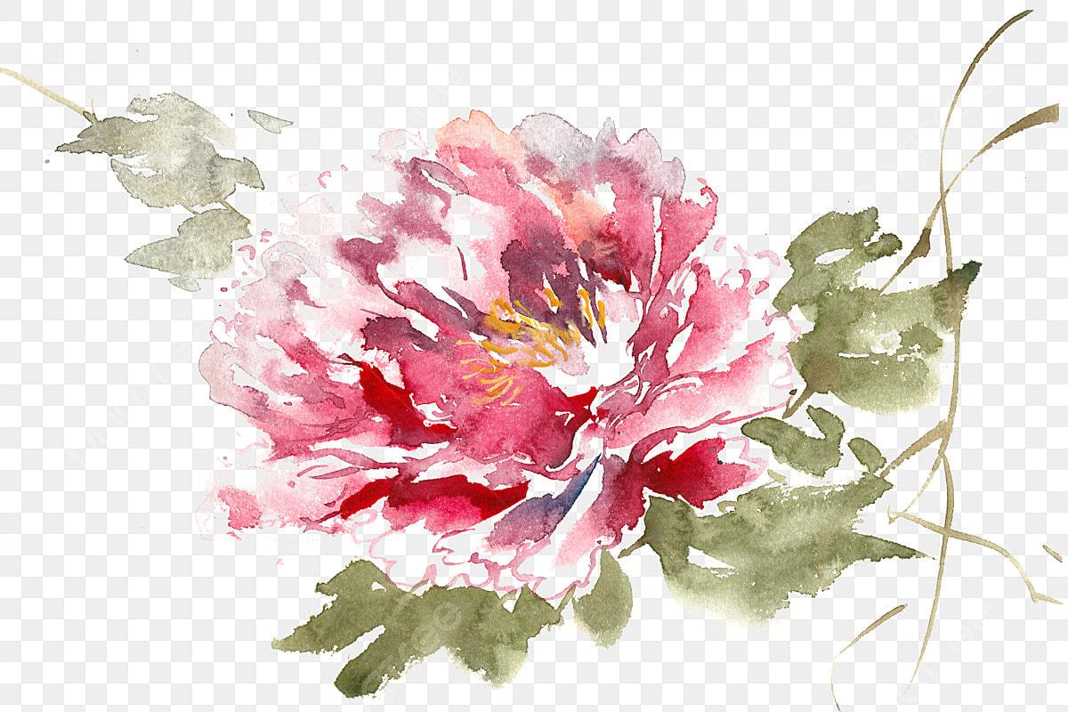 Màu Nước Bằng Tay Những Bông Hoa đẹp Màu Nước Bằng Tay