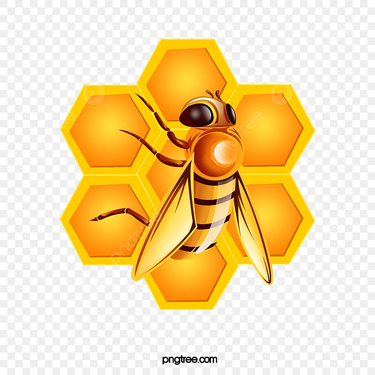نحلة كرتون