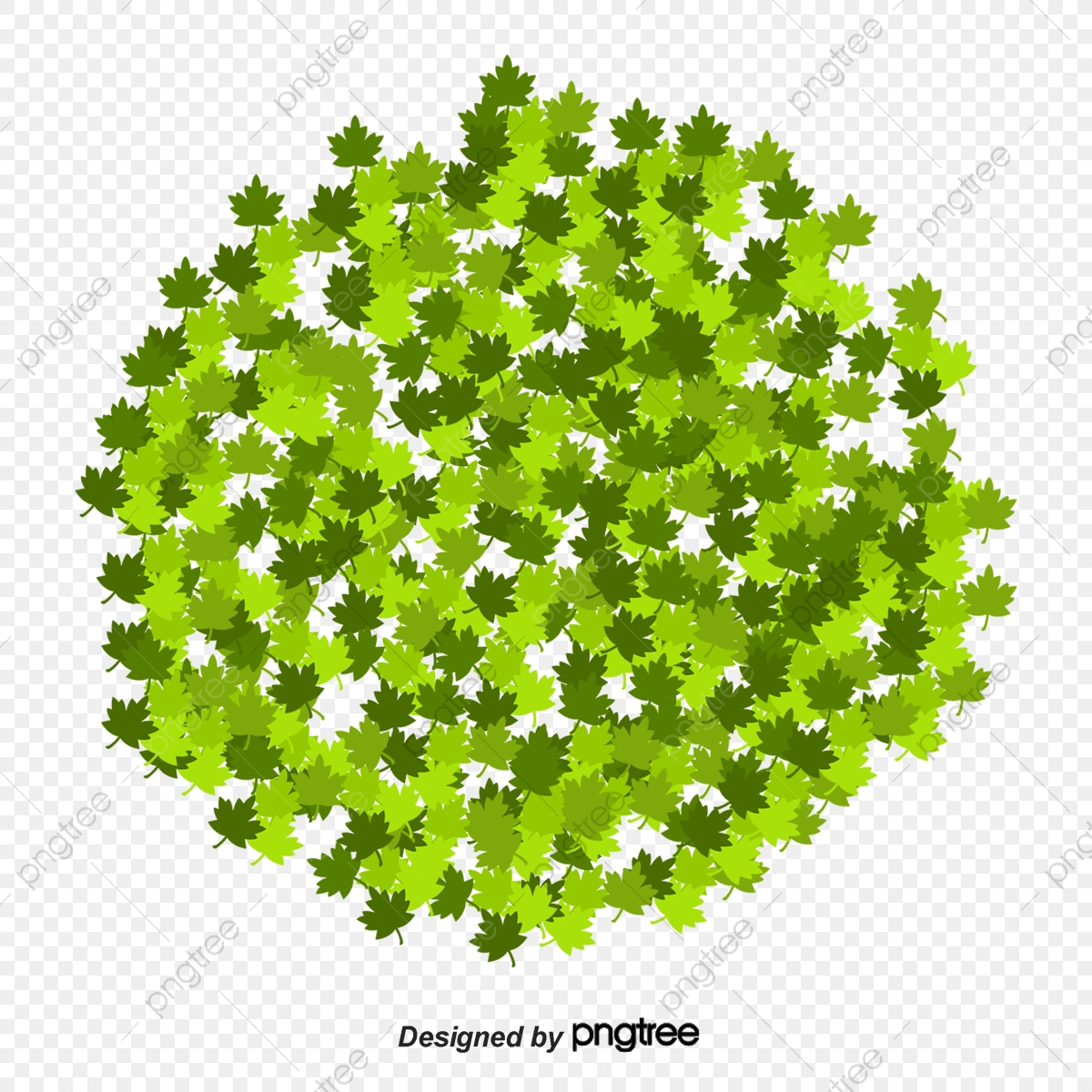 les buissons de dessin vectoriel dessin buisson bois png et vecteur pour t u00e9l u00e9chargement gratuit