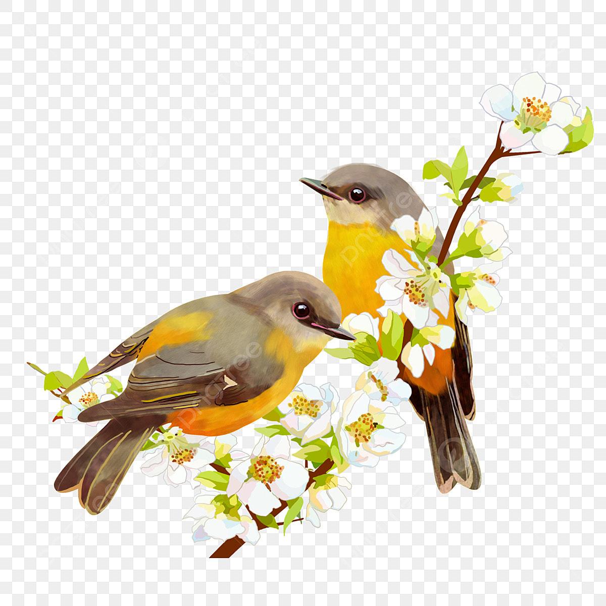 L Oiseau Sur La Branche De Dessin Vectoriel Des Branches De