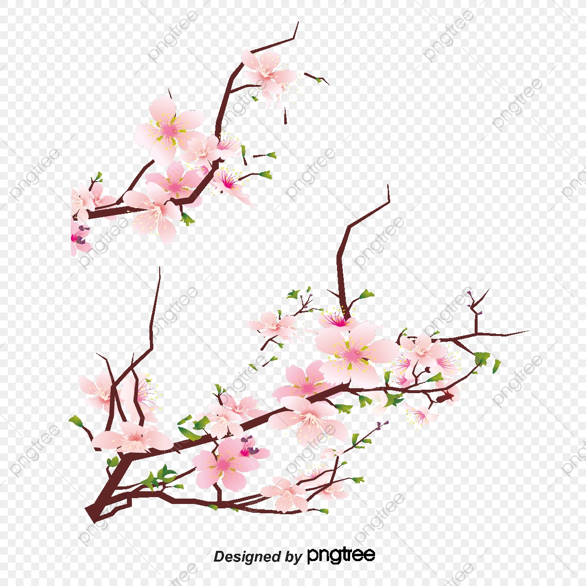 Hiasan Bunga Vektor Hiasan Bunga Bunga Png Dan Vektor Untuk Muat