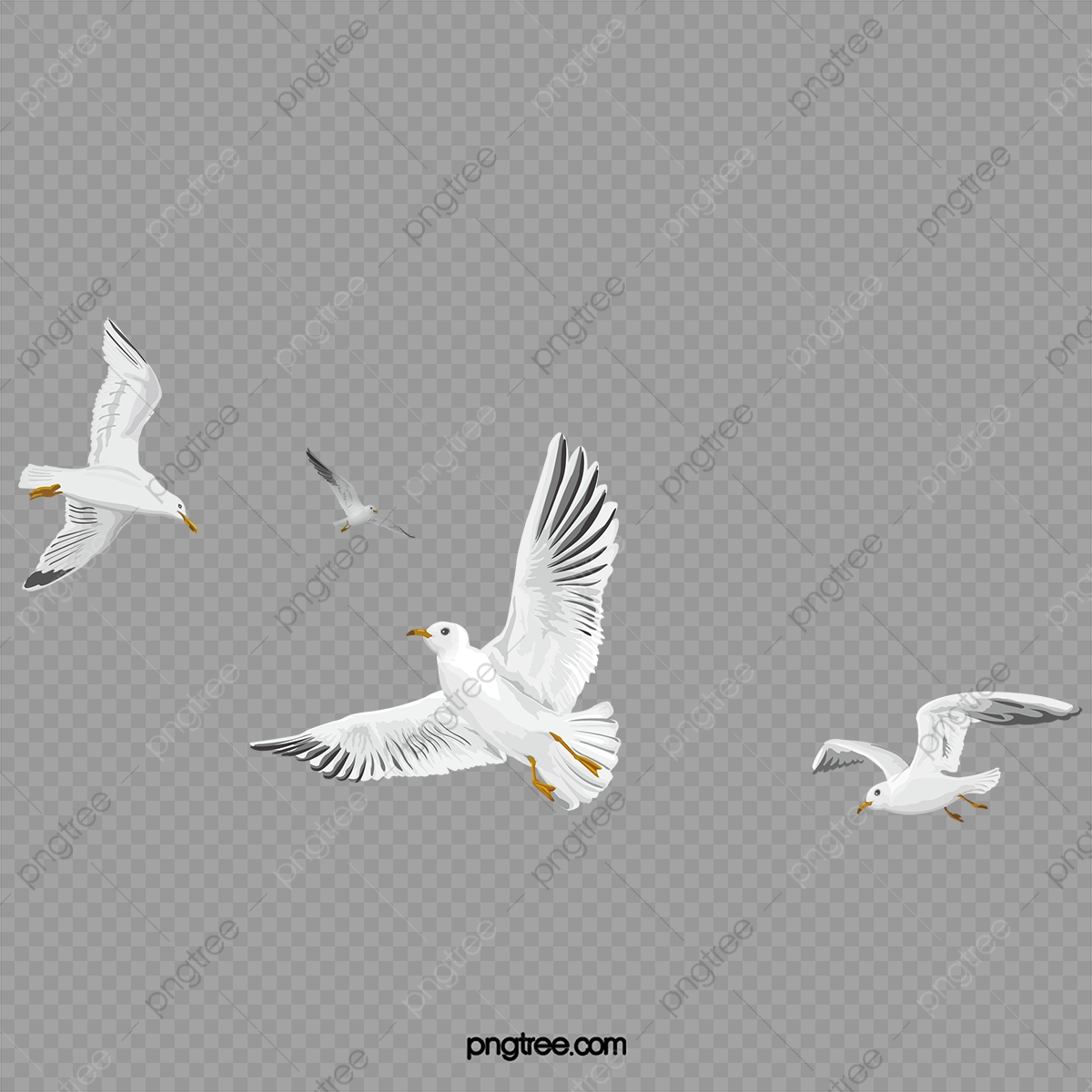 Flying Birds Fly Birds Flying Clipart Png Transparent Clipart Image And Psd File For Free Download