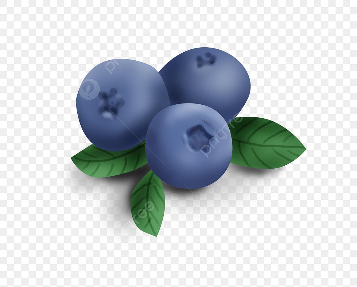 Fresh Blueberries, Fruit, Sweet Blueberry PNG Transparent