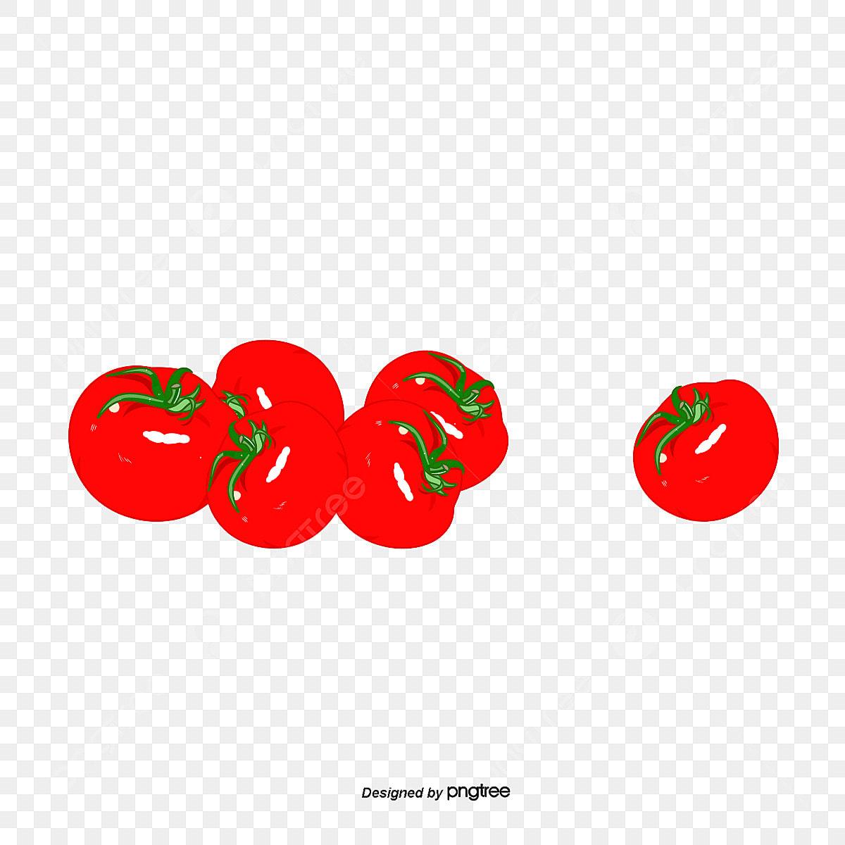 Tomates Cerises Fraiches De Fruits Des Tomates Cerise Petite