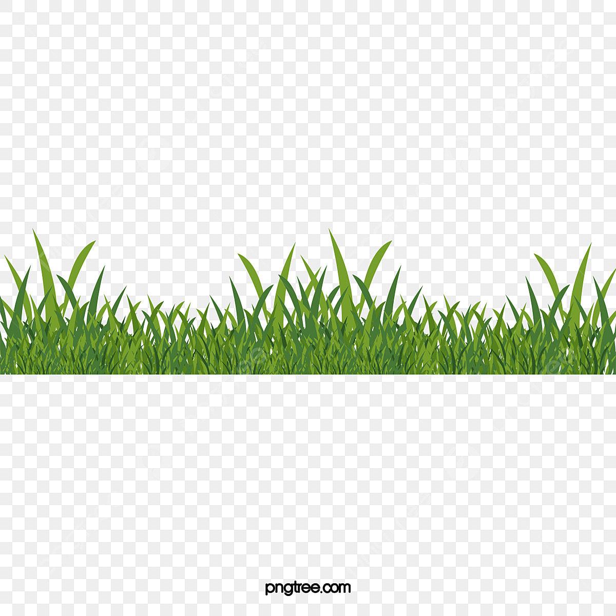 de l herbe verte vert de l herbe le dessin de l herbe png et vecteur pour t u00e9l u00e9chargement gratuit