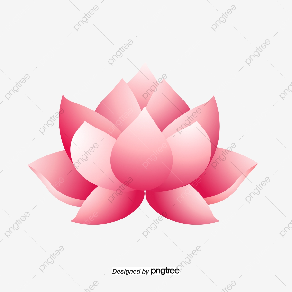 Lotus Flower Cartoon Lotus Vector Flower Vector Cartoon Vector