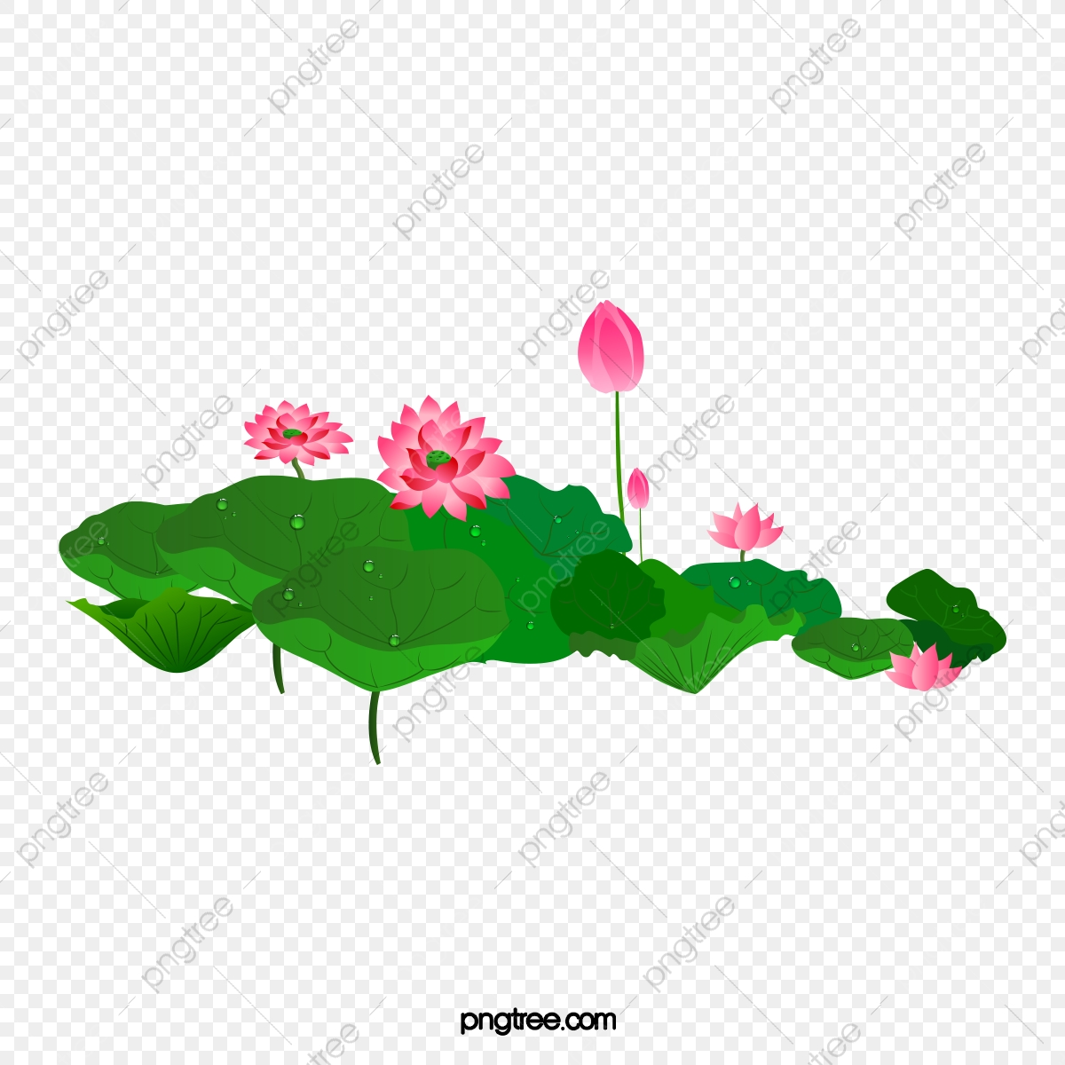 Lotus Flower Lotus Vector Flower Vector Flower Clipart Png