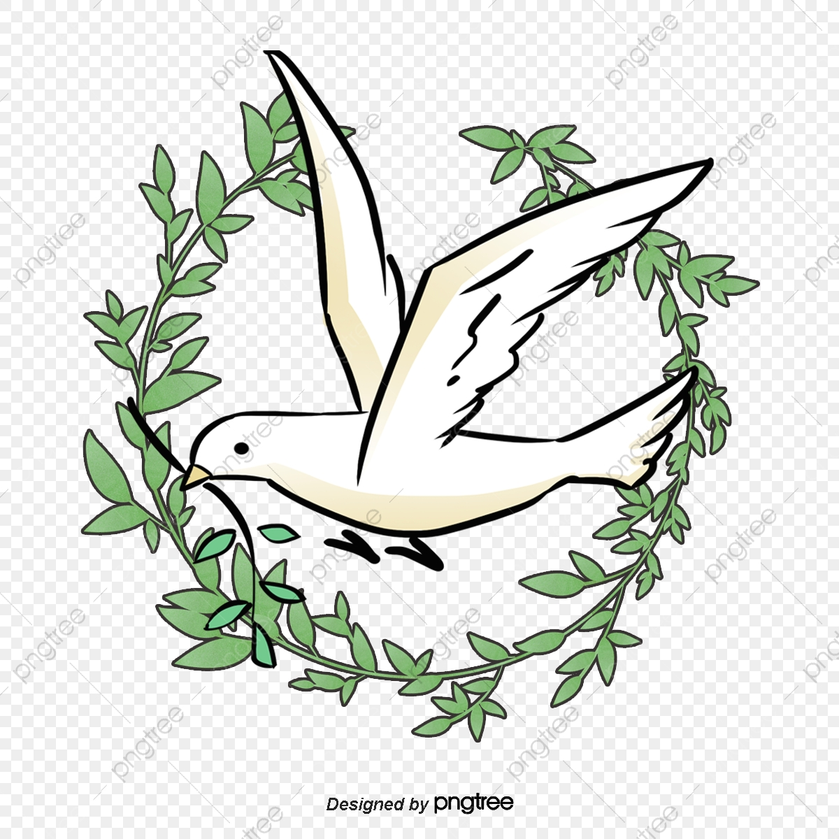 Peace Dove Pigeon Olive Branch Olive Png Transparent Clipart Image And Psd File For Free Download All our images are transparent and. https pngtree com freepng peace dove 619119 html