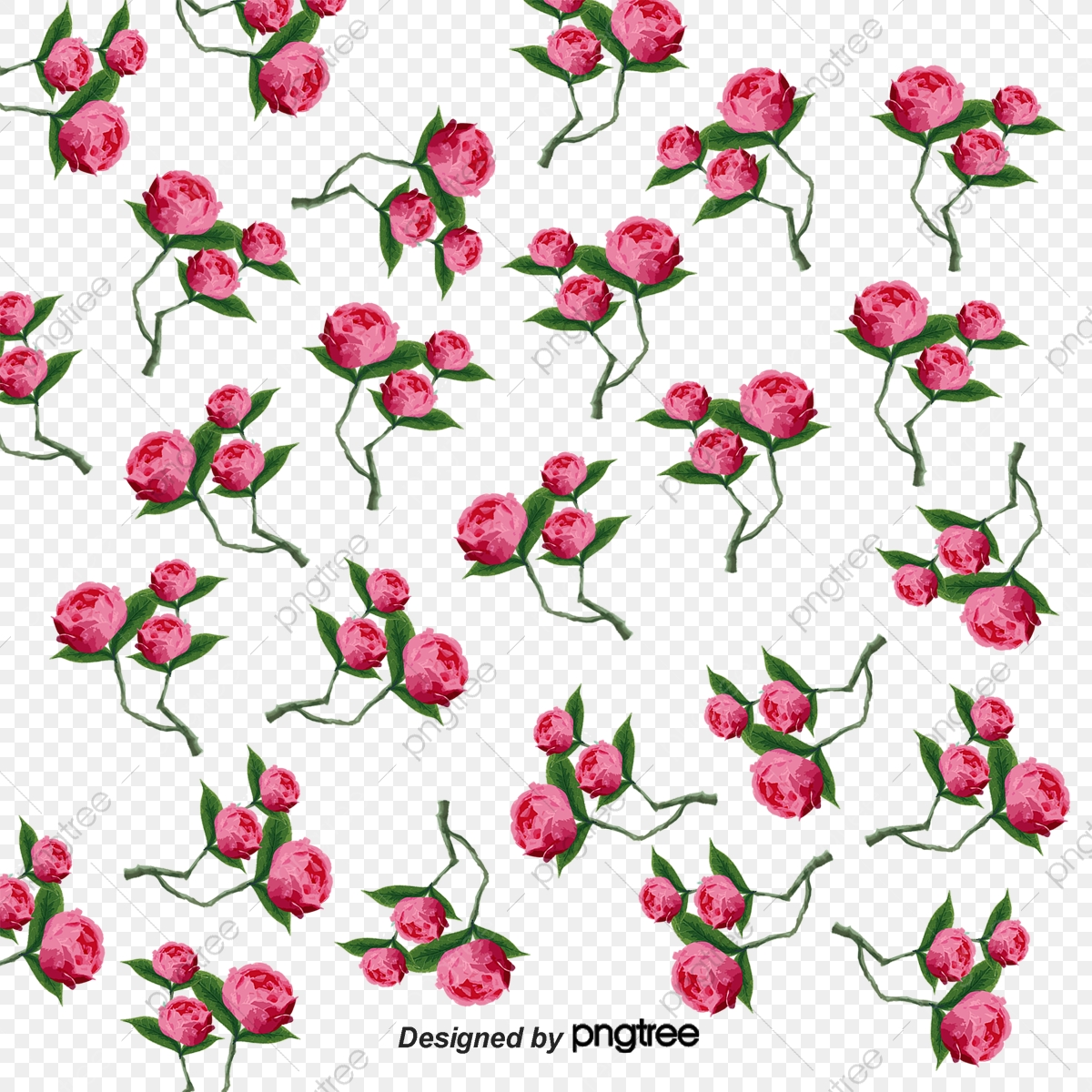 Plant Flowers Floral Background Shading High Resolution Images