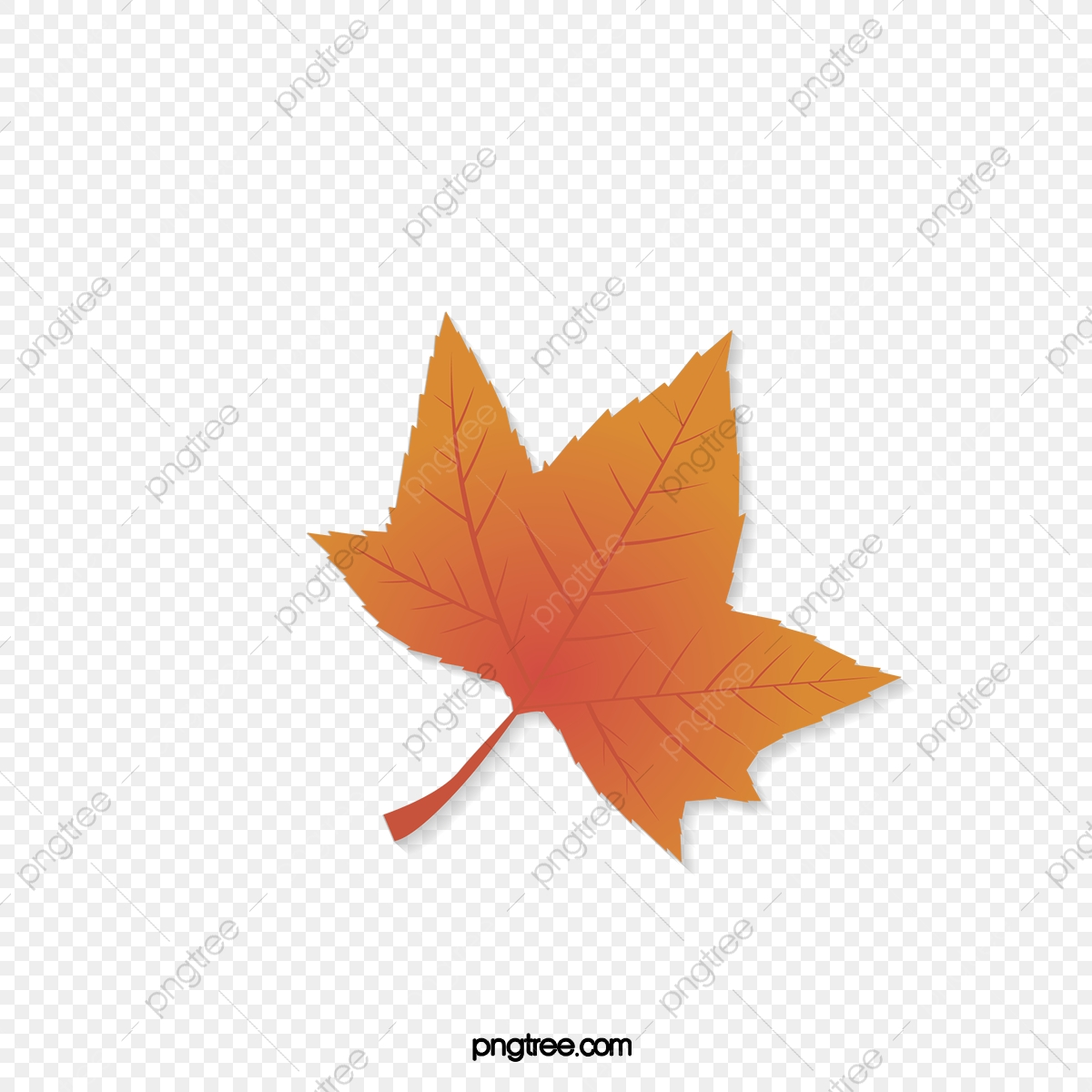 Red Maple Leaves Vector Material Free Dig Red Vector Red Material Maple Png And Vector With Transparent Background For Free Download