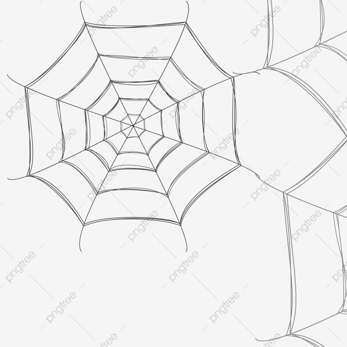 Fotos De Desenhos De Teia De Aranha De Teia De Aranha O Icone De