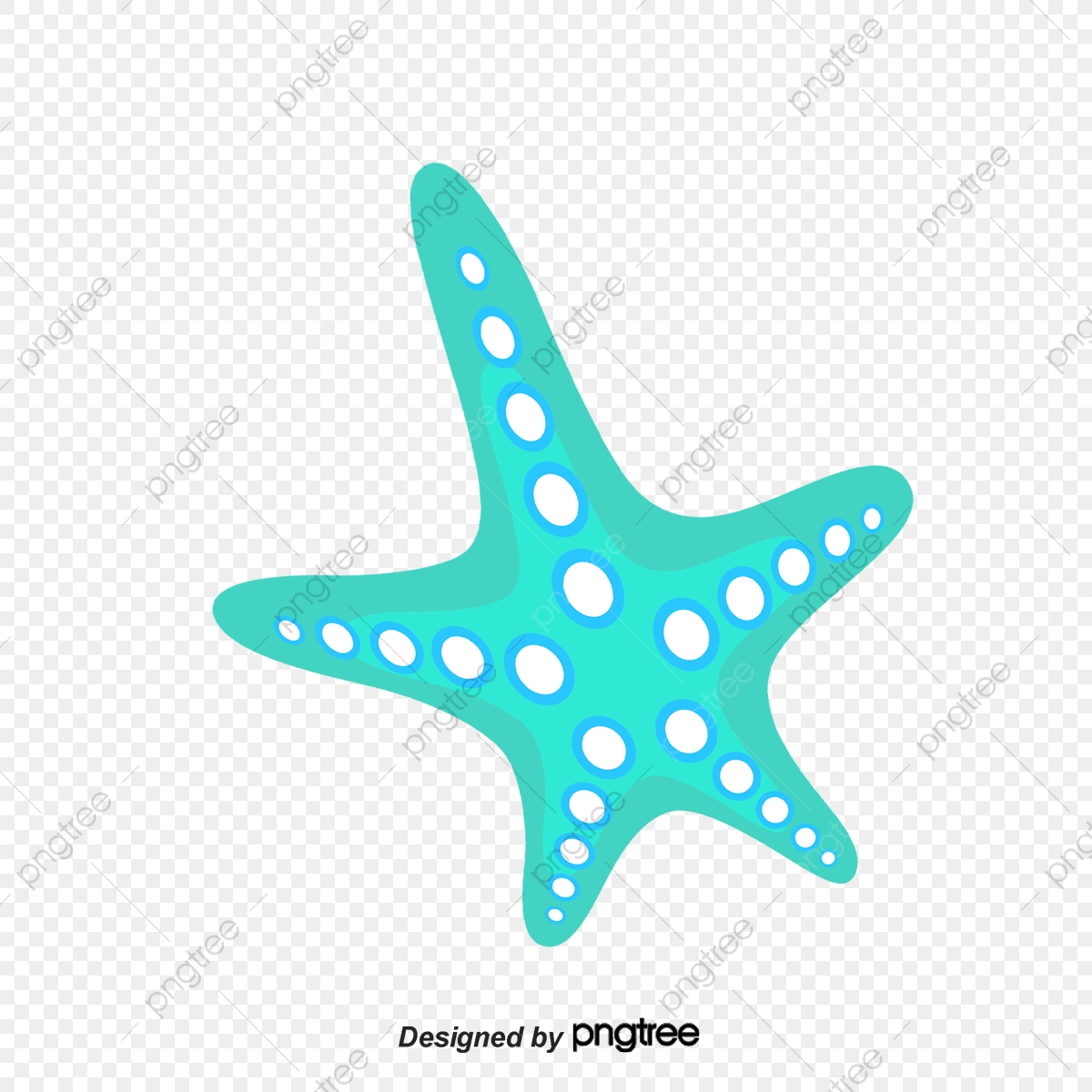 Starfish Beach Starfish Clipart Starfish Decorations Png
