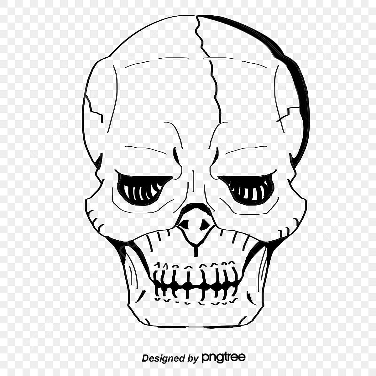 Vetor Caveiras Branco White Skull Caveira Desenhos De Caveiras