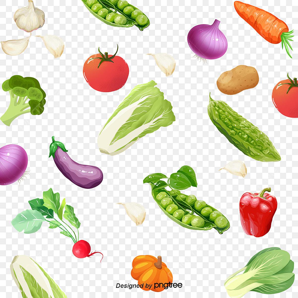 Sayur Sayuran Campur Aduk, Hiasan, Vektor, Semua Jenis Sayur