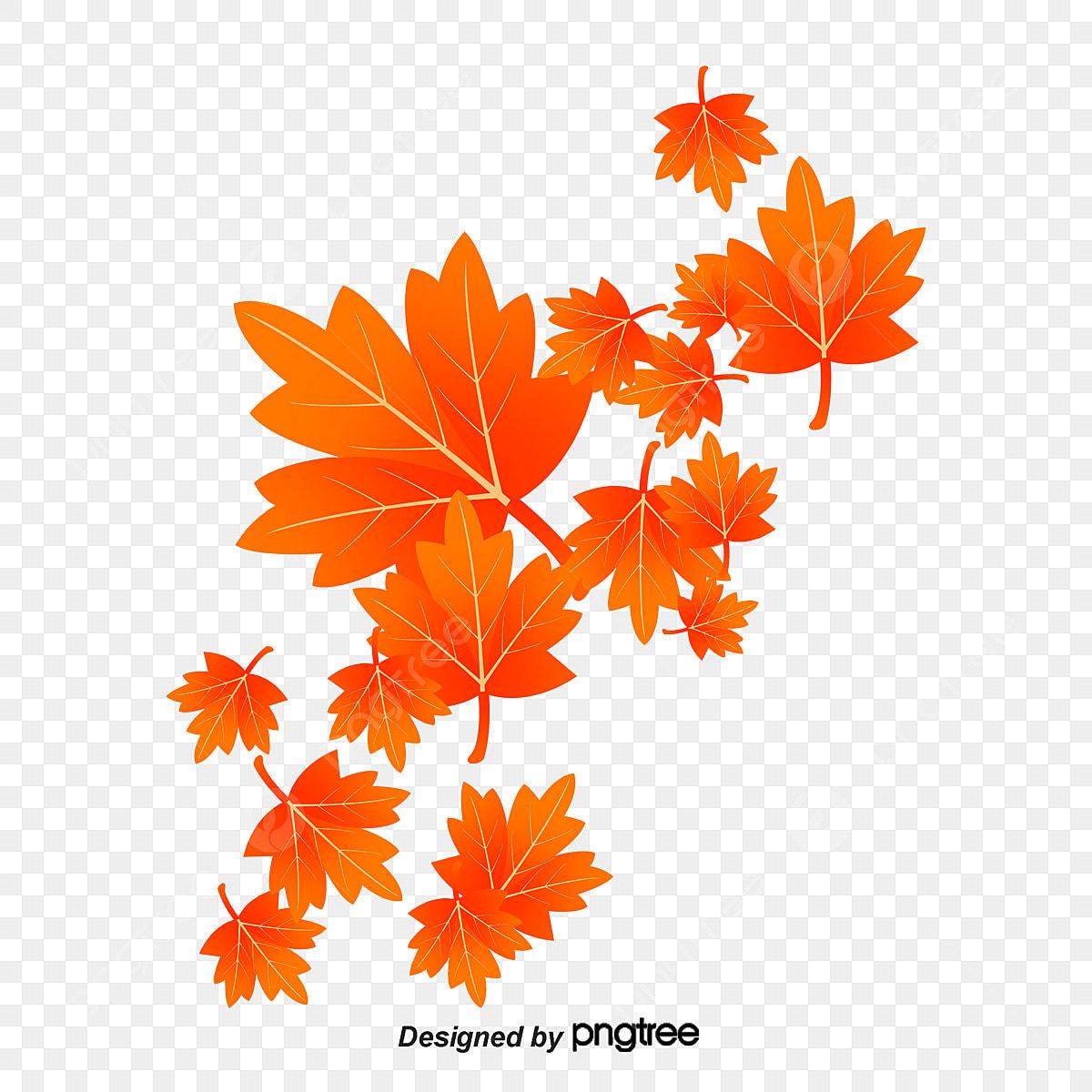 Hojas de oto o fall defoliaci n oto o png y vector para - Descargar autumn leaves ...