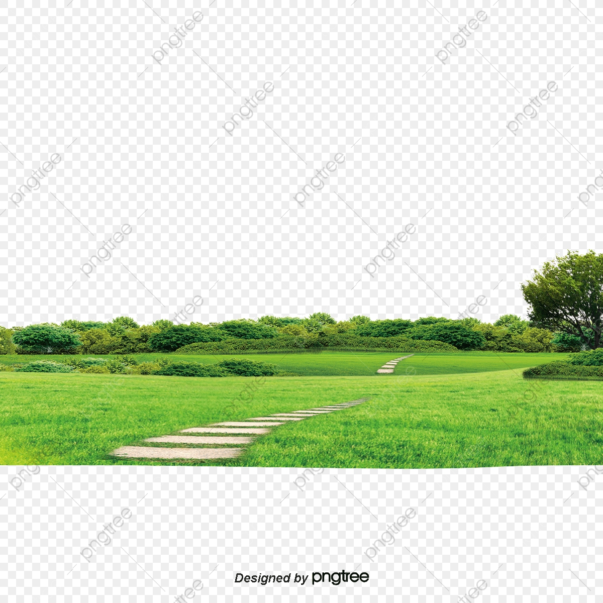 Background Of Nature, Nature, Background, Tree PNG