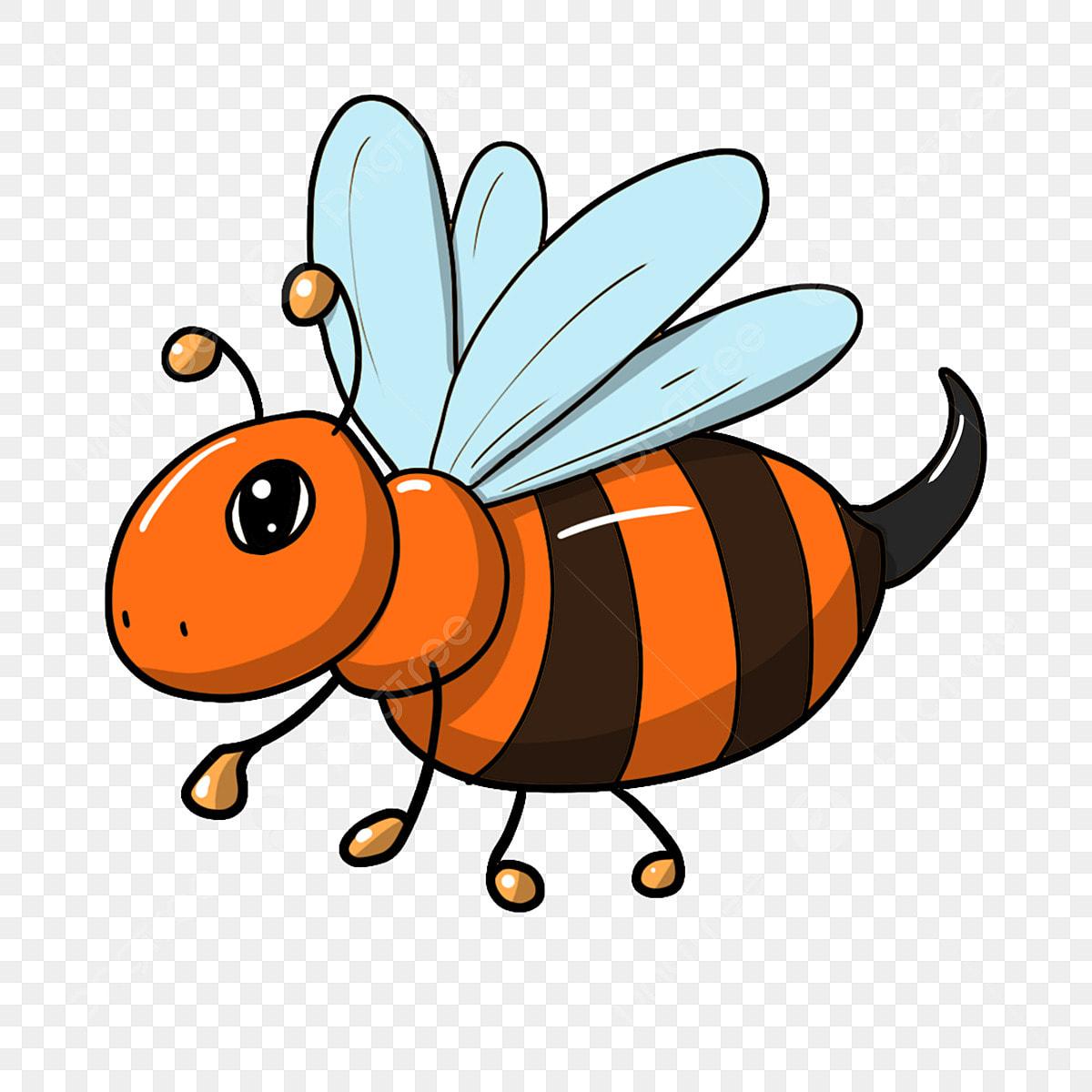 28 Bienen Bilder Kostenlos - Besten Bilder von ausmalbilder