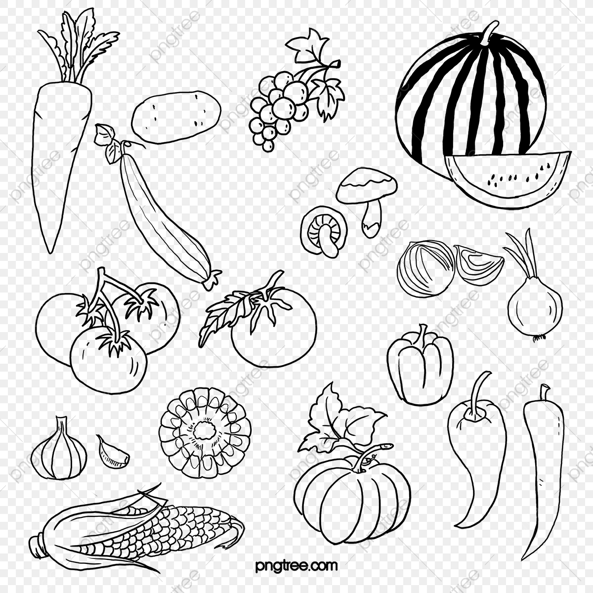 Black And White Fruits And Vegetables Black Vector Artwork Watermelon Png Transparent Clipart Image And Psd File For Free Download