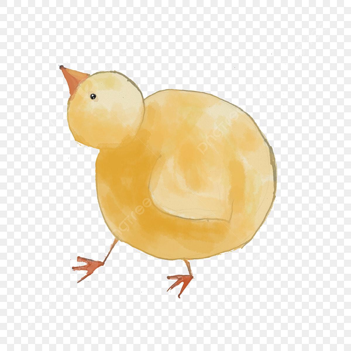 無料ダウンロードのための鶏の赤ちゃん 鶏 ひよこ 動物png画像素材