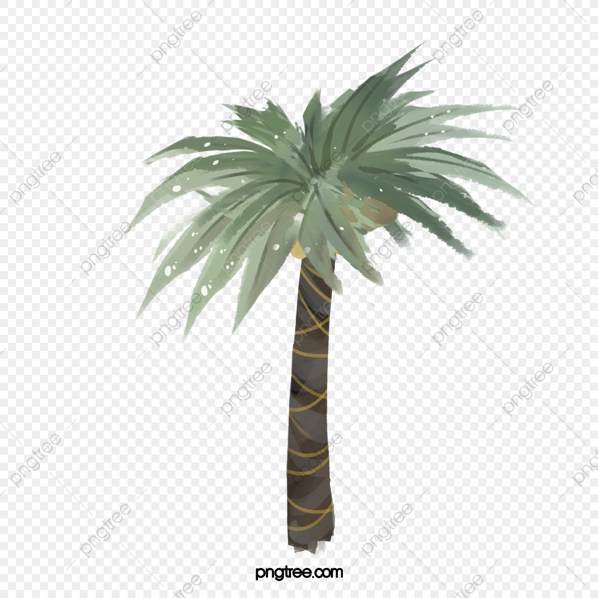 Date Palm Trees, Plant, Trees, Plants PNG Transparent