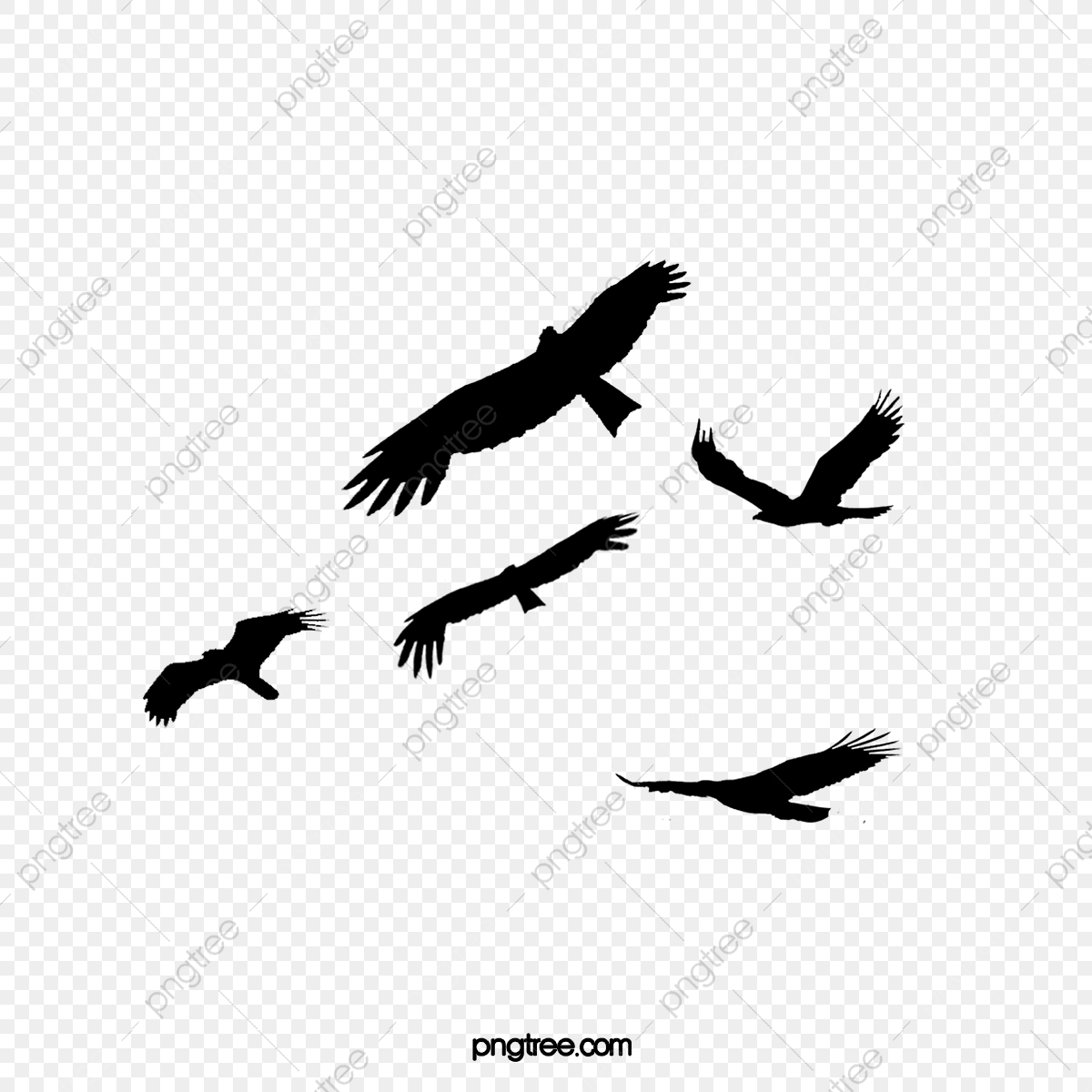 Flying Bird Silhouette, Fly, Bird, Dayan PNG Transparent Clipart