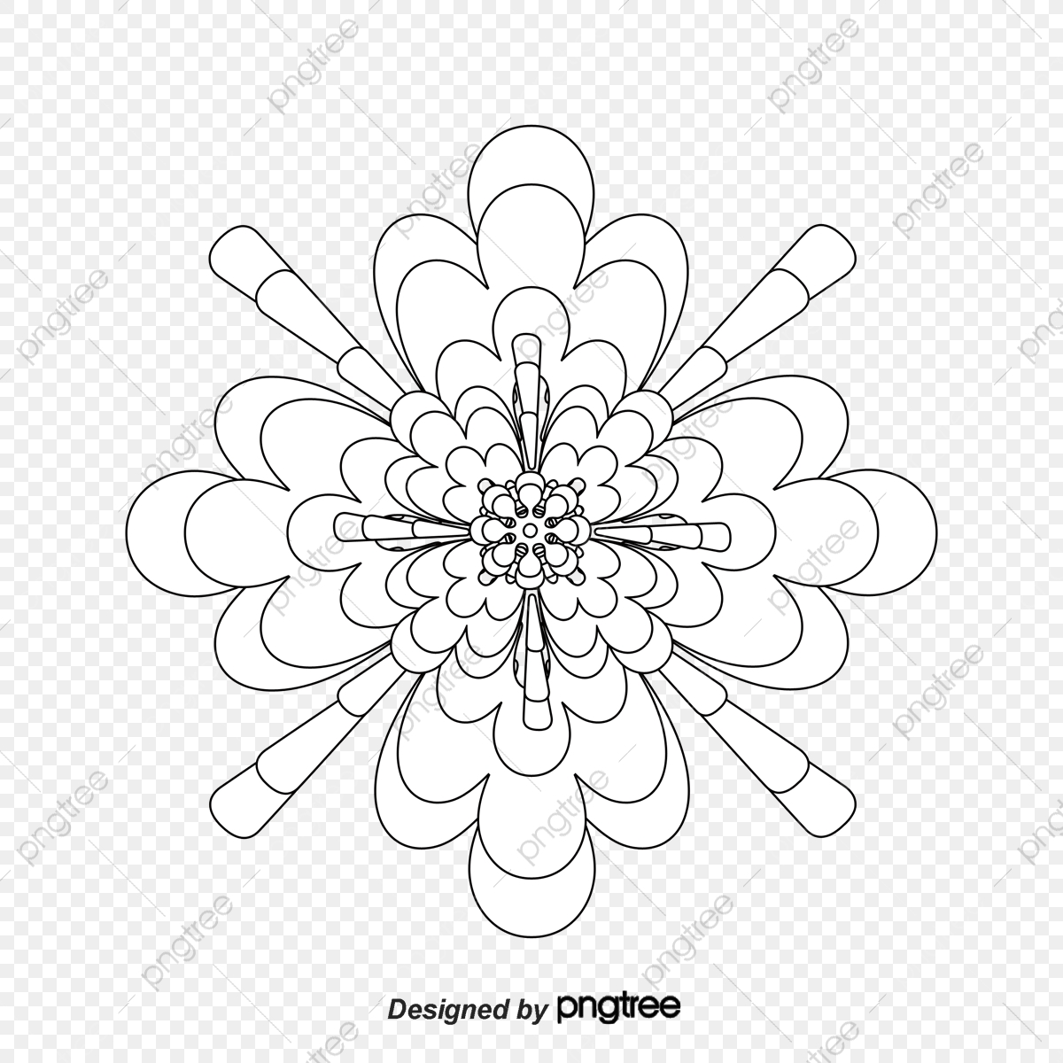 Desenho De Flores De Inverno Bouquet De Flores Cinco Petalas De