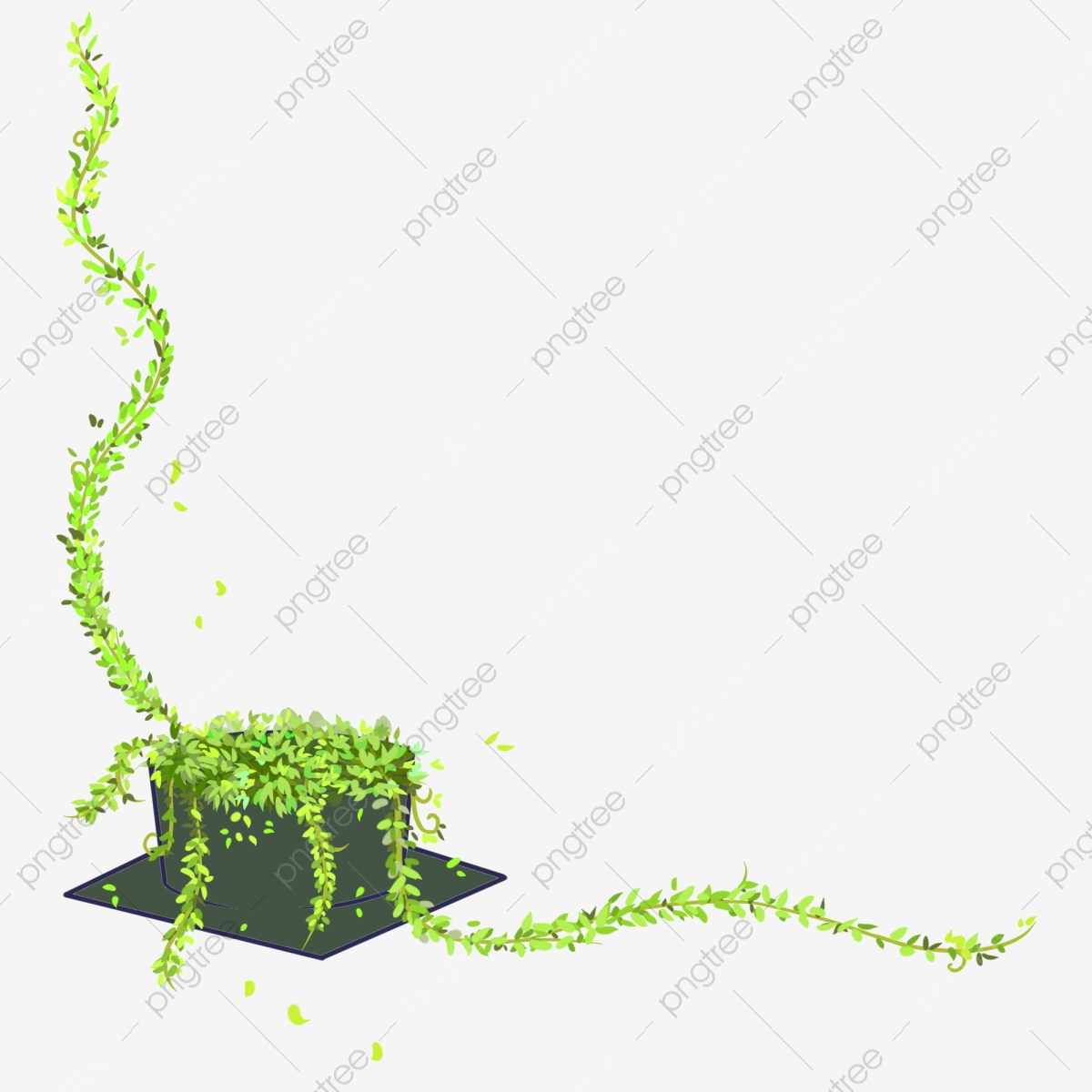 Free Ivy Cliparts, Download Free Clip Art, Free Clip Art on Clipart Library
