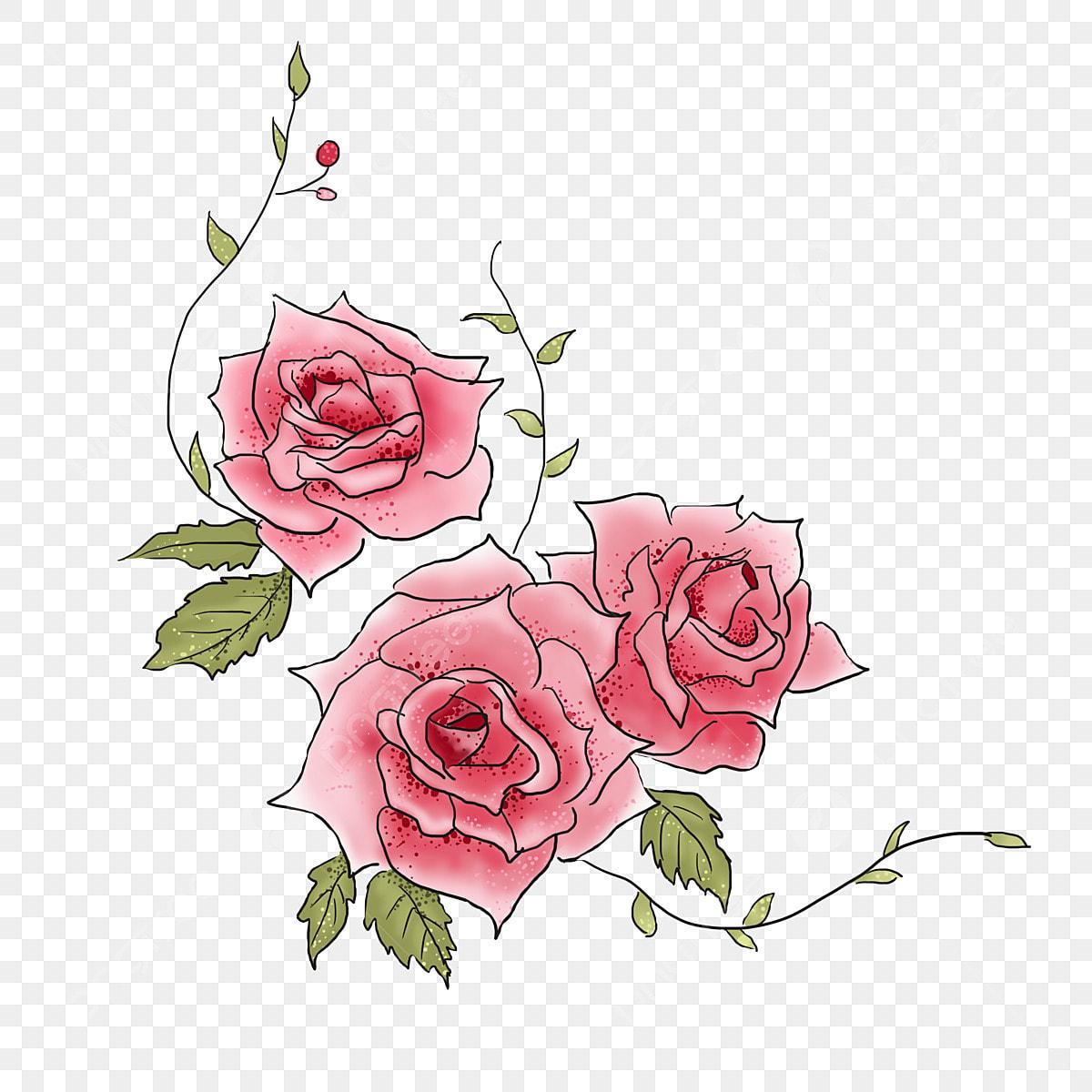 ورد وكتاب الوردة الورود الوردية نبات Png وملف Psd للتحميل مجانا