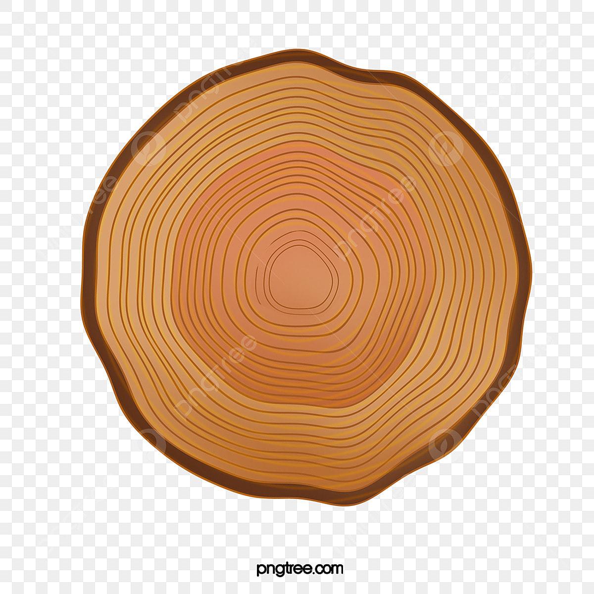 樹輪, 樹輪, 年輪, 樹木PSD格式素材和PNG圖片免費下載