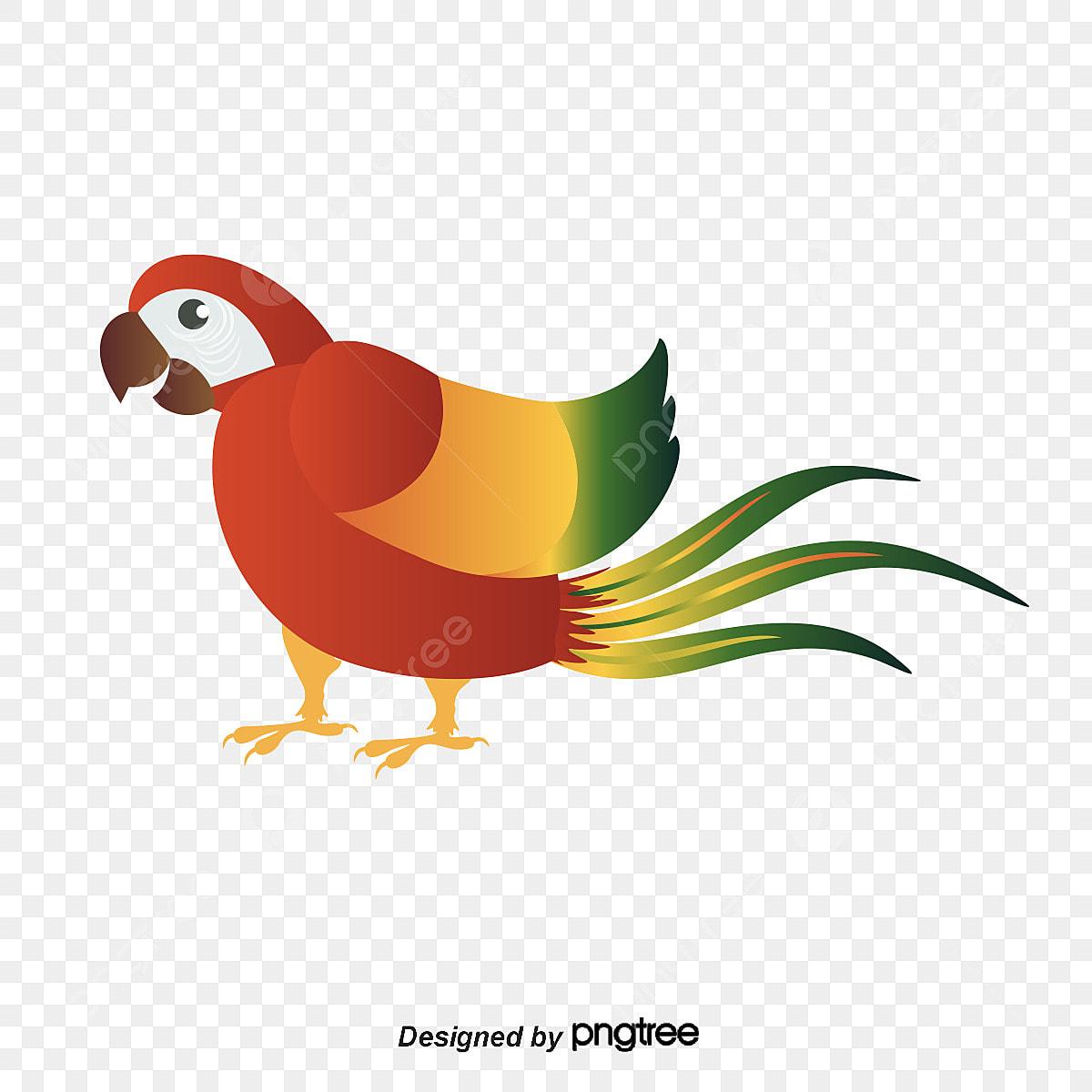 Perroquet De Dessin Vectoriel Perroquet Dessin De Perroquet Perroquet De Vecteur Png Et Vecteur Pour Telechargement Gratuit