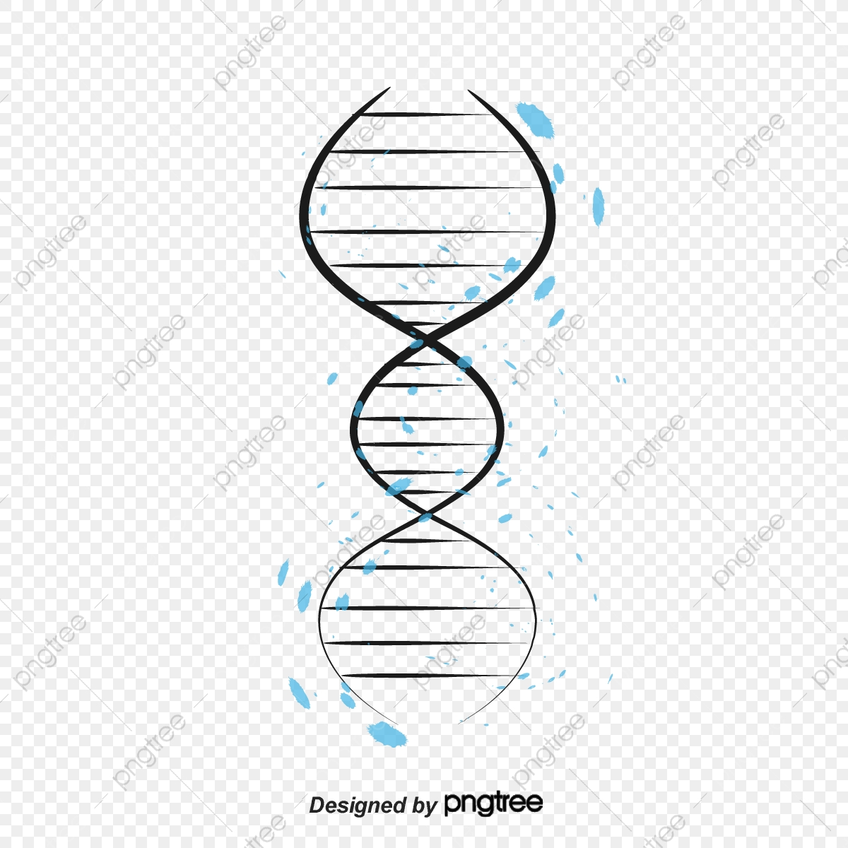 Estructura Del Adn Del Vector Resumen Three Dimensional