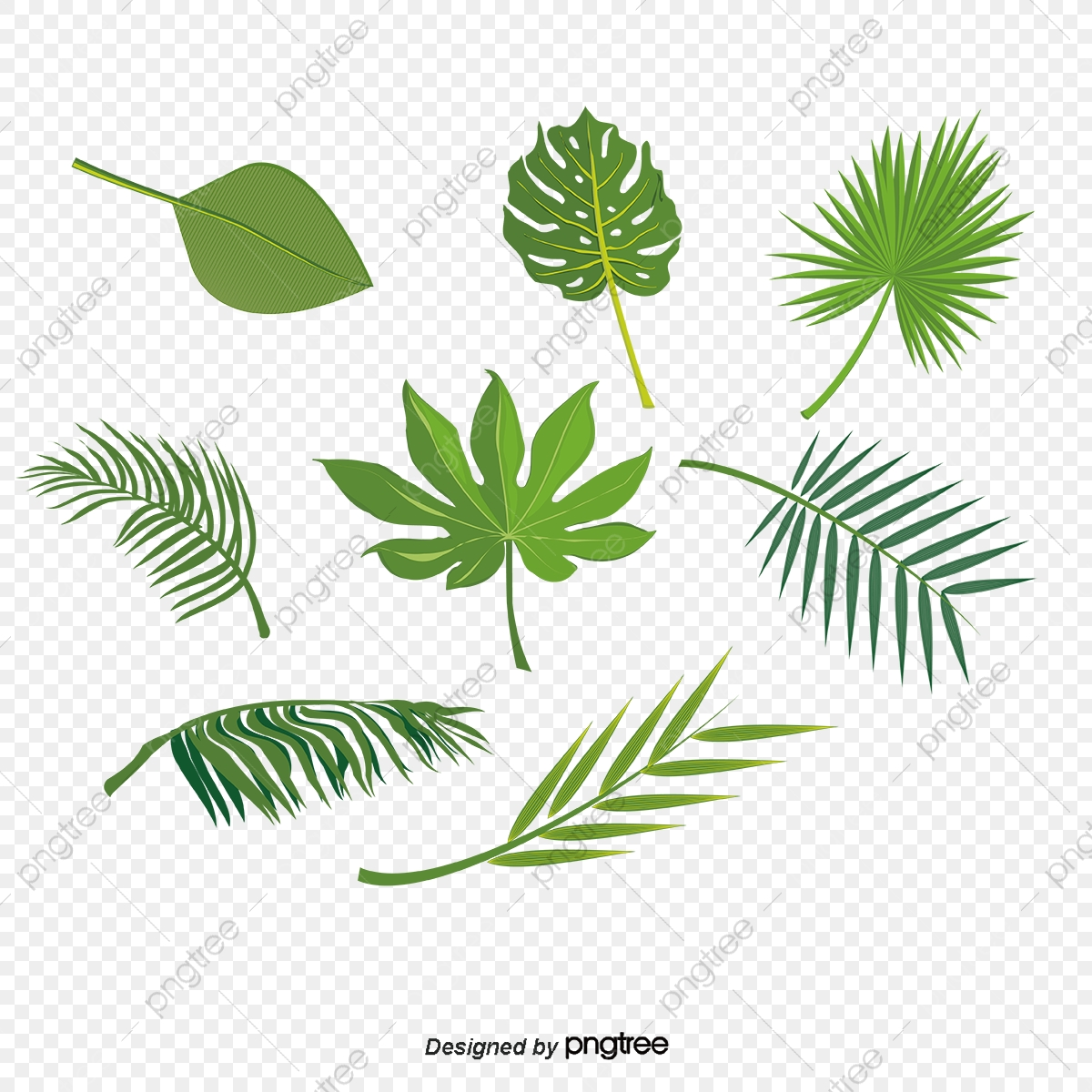 Leaf Vector 49000 Leaf Graphic Resources For Free Download