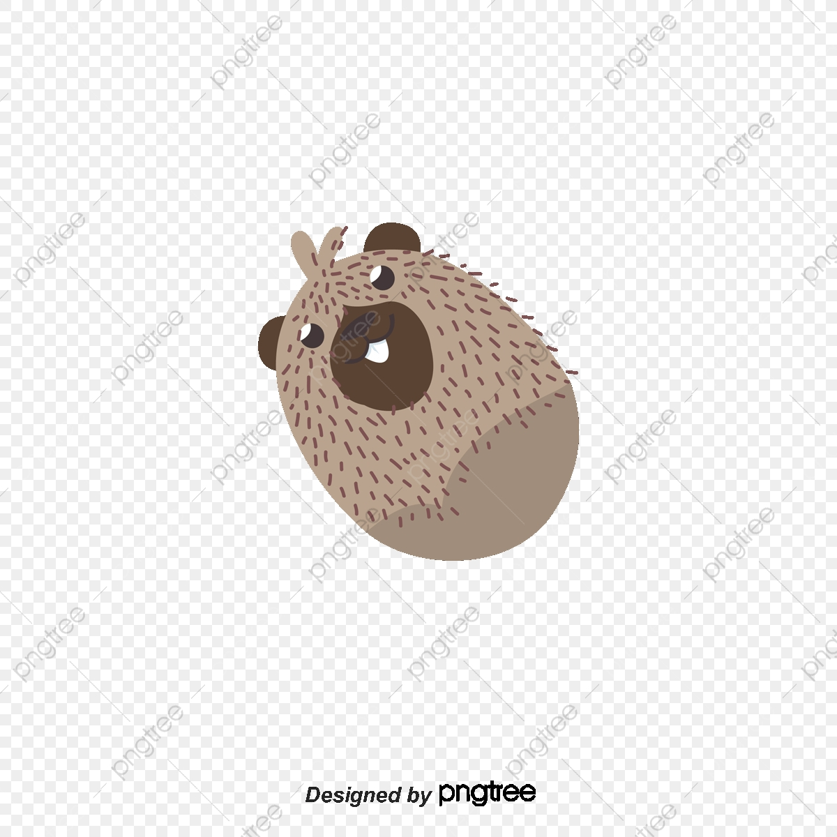 Australian Animals Png Vector Psd And Clipart With Transparent Background For Free Download Pngtree