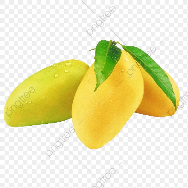Pictures Of Mango Free Download