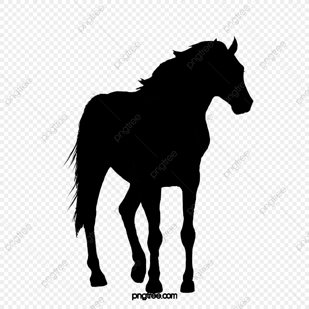 A Horse Silhouette Horse Clipart Black Horse Png Transparent Clipart Image And Psd File For Free Download