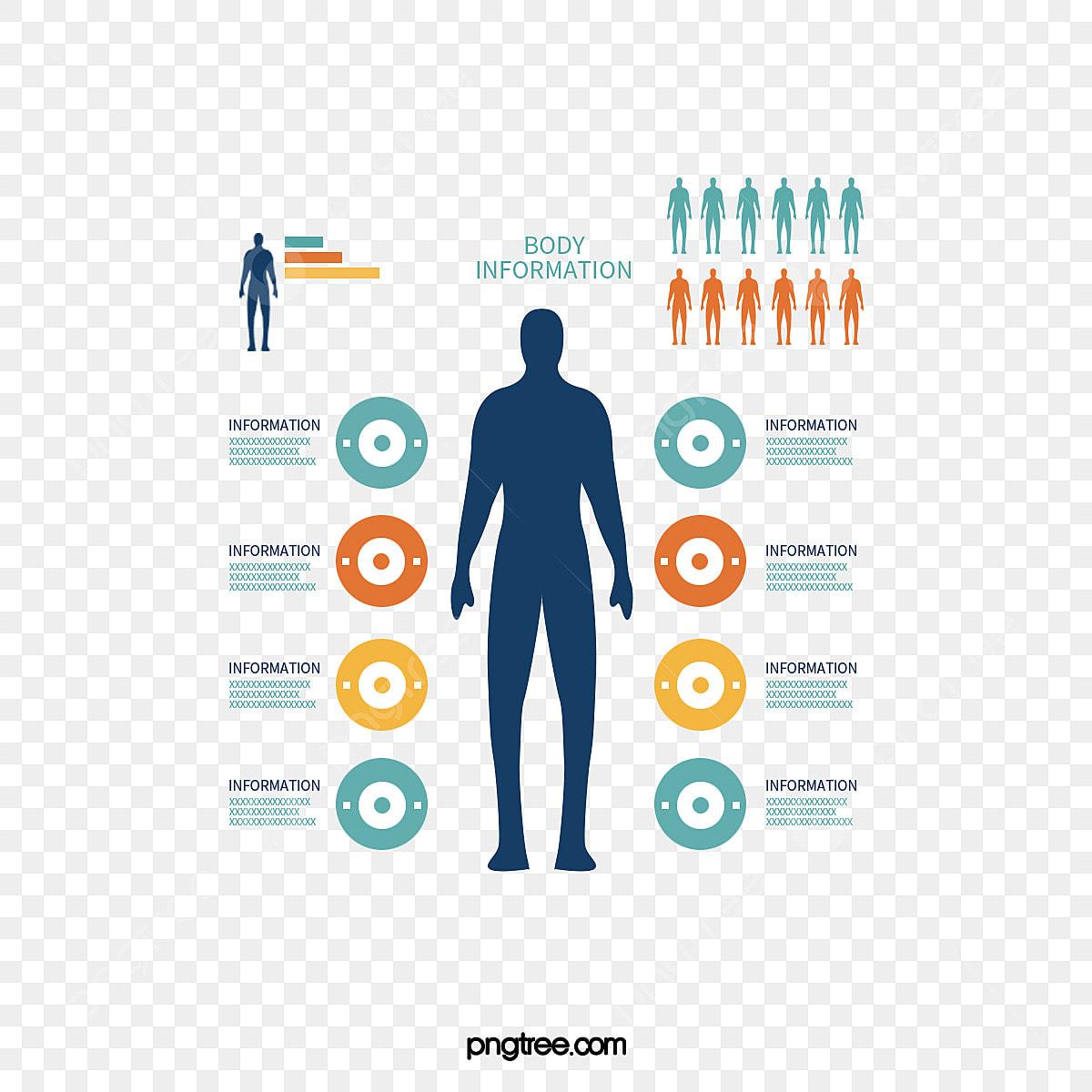 Analysis Of Patterns Of Human Vector, Human Pattern Analysis