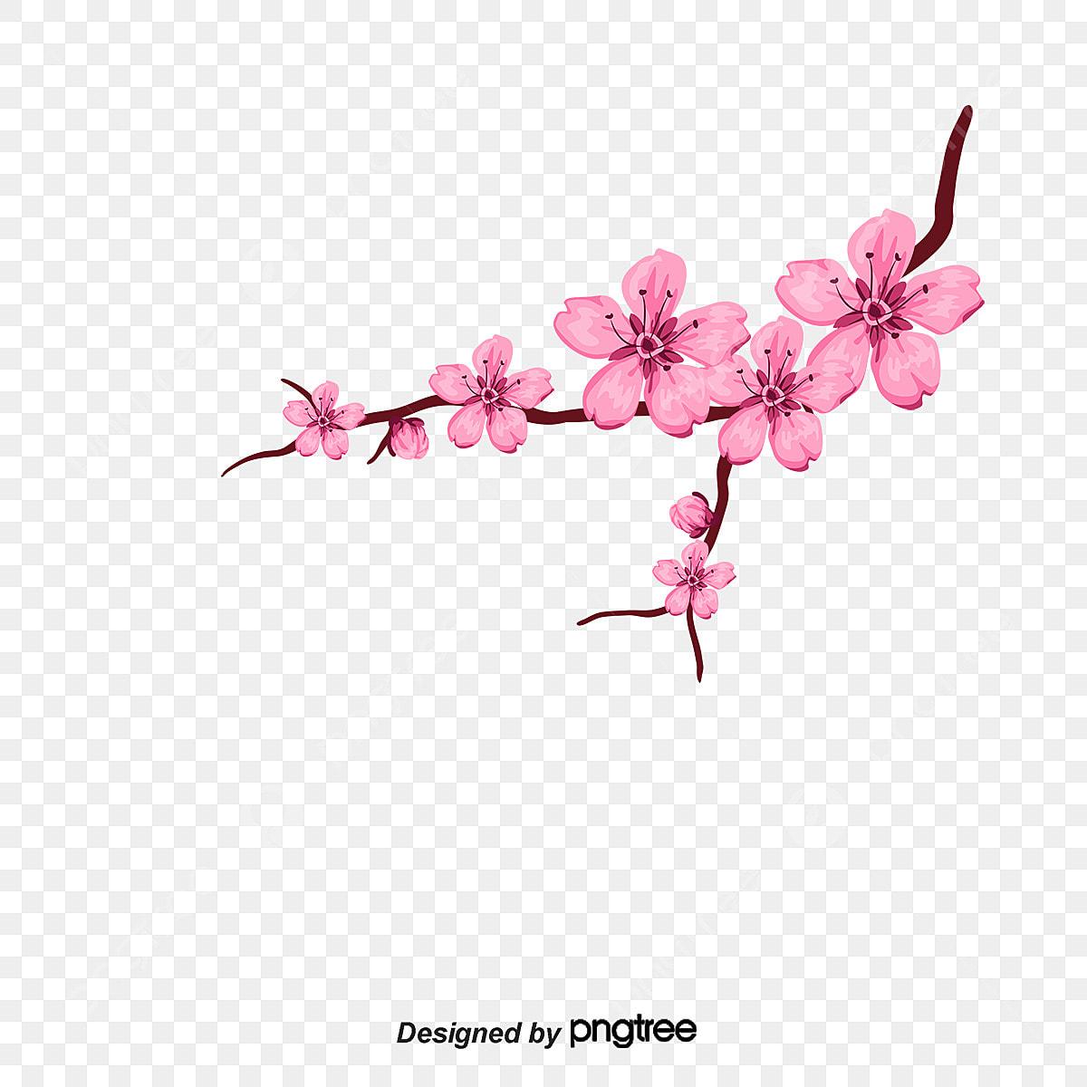 Petalas De Flor De Cerejeira Vector De Petalas Flor De