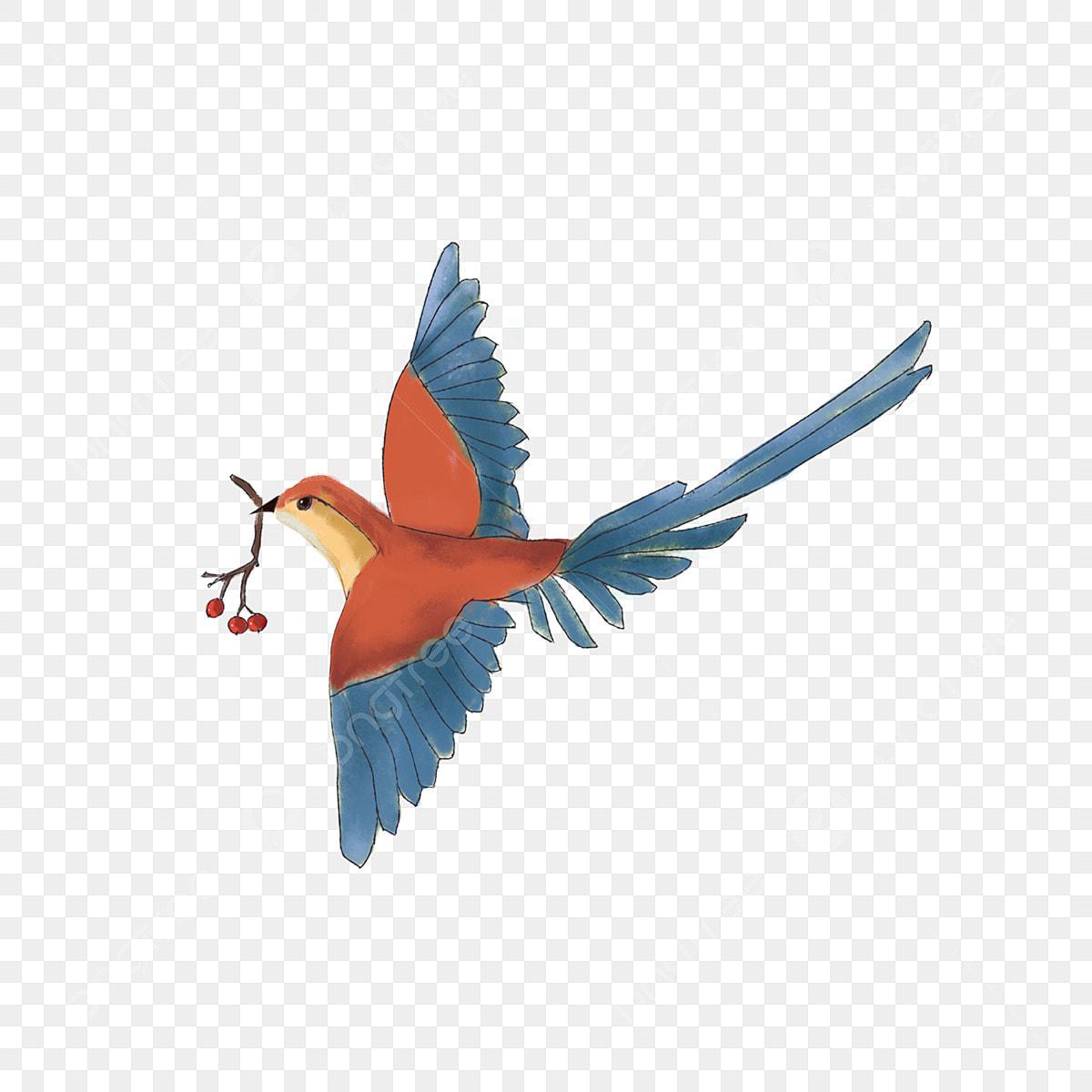 O Passaro Pintado Colorido Dos Desenhos Animados Animal Dos