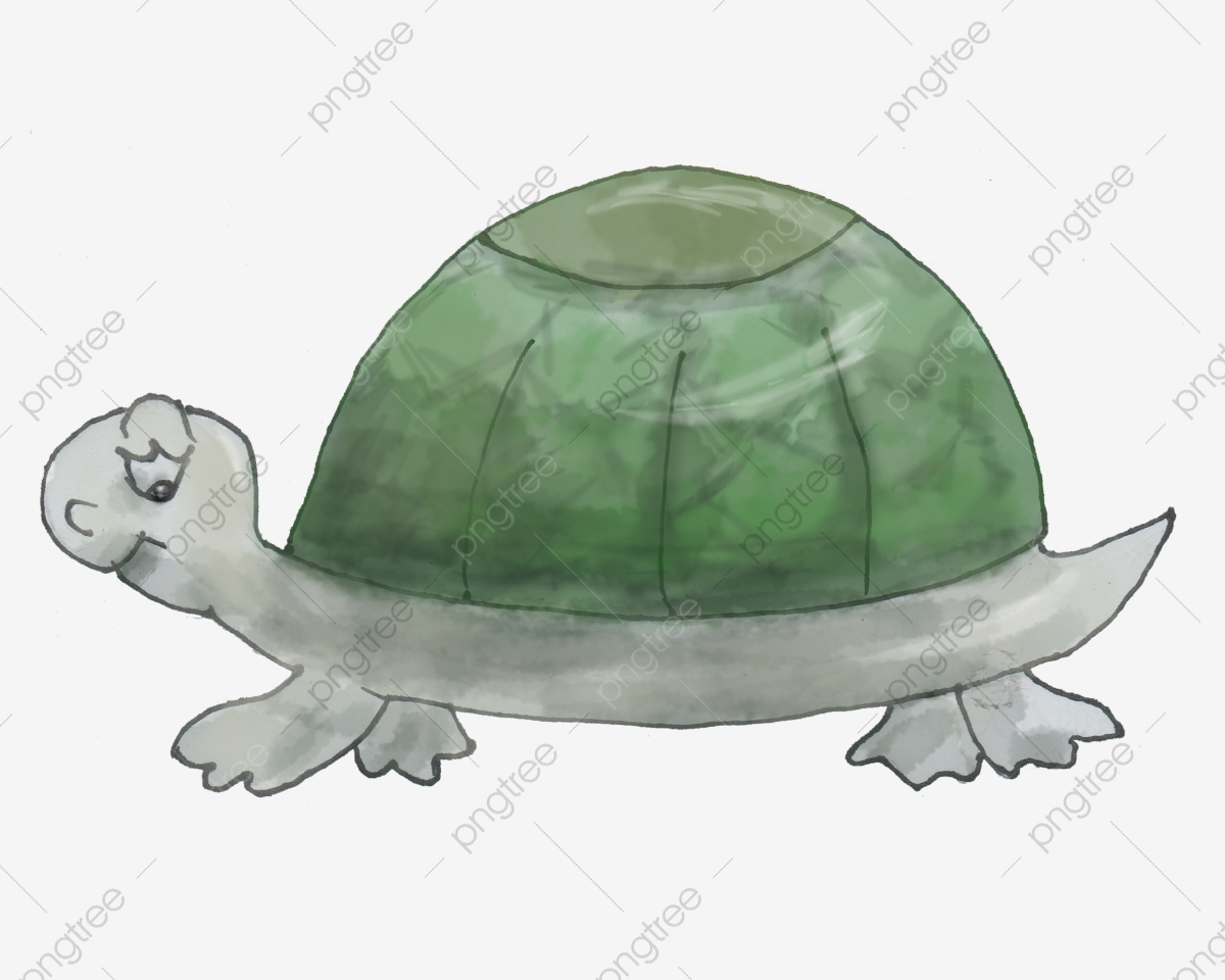 無料ダウンロードのための水彩カメ 亀 水彩 動物png画像素材