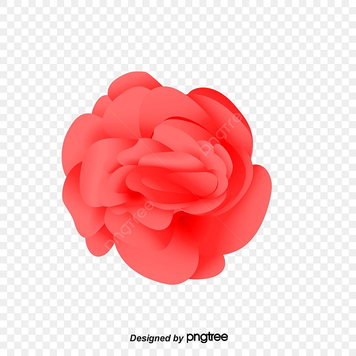 الجميلة وردة حمراء بخير وردة حمراء الورد Png والمتجهات للتحميل