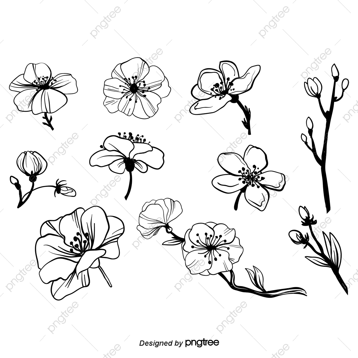 Pintura Decorativa Flores Preto E Branco Desenho De Linhas