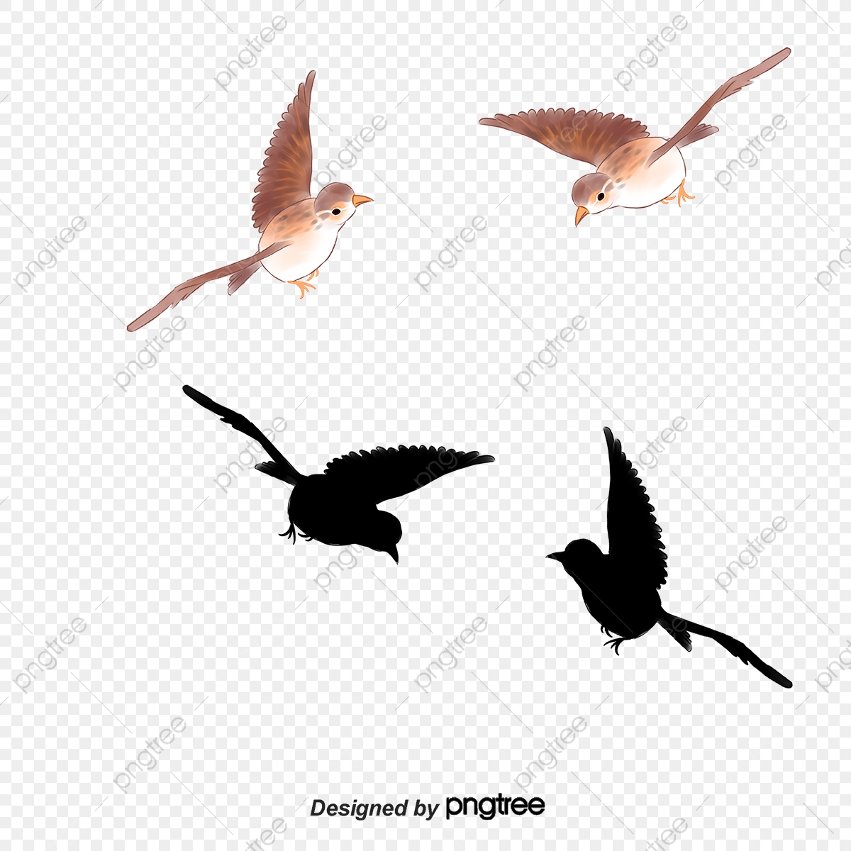 Flying Birds, Creative, Fly, Birds PNG and Vector with Transparent