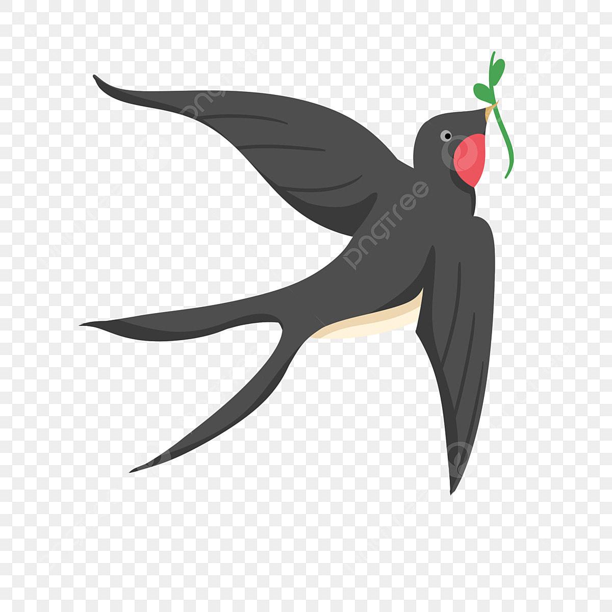 طائر السنونو خفيف مثل طائر السنونو السنونو الطيور Png وملف Psd للتحميل مجانا